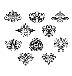 Set black and white floral elements vector