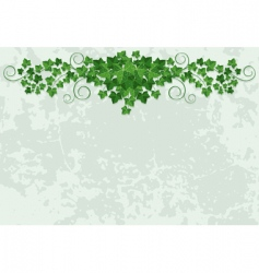 Wall with ivy vector