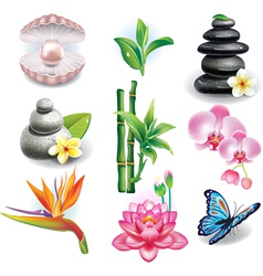 Set of SPA symbols vector image