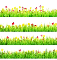Spring meadow with white EPS 10 vector image