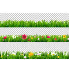 summer flower border vector image