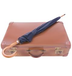Suitcase and Umbrella vector image