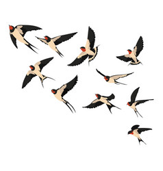 A flock flying swallows of vector