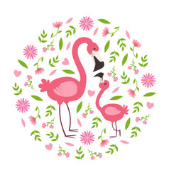 cute baby flamingo and parent happy beautiful vector image