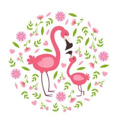 cute baflamingo and parent happy beautiful vector image