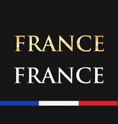 france - golden and white captions vector image