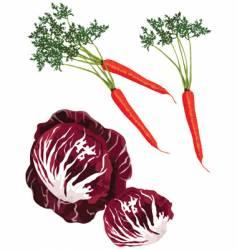 Mix vegies vector