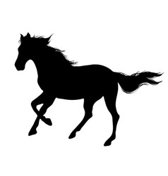 running horse black silhouette vector image