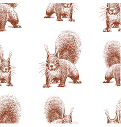 Seamless background sketches forest squirrel vector