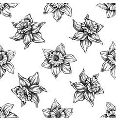 Seamless pattern with black and white daffodil vector