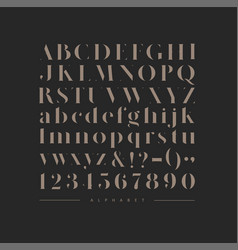 stylish elegant font brown vector image