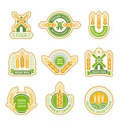 wheat badges field grain farm fresh flour vector image