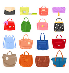 Woman bag girls handbag or purse vector