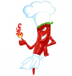 chili chef vector image