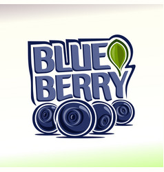 blueberry still life vector image vector image