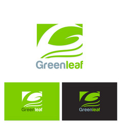 green leaf eco logo vector image