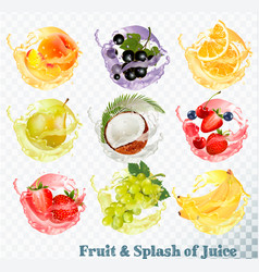Set of fruit juice splash peach orange pear vector