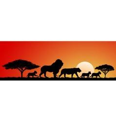 African lions vector