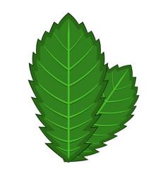 Elm leaf icon cartoon style vector