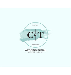Initial ct letter beauty logo handwriting vector
