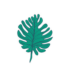 Lobed tropical leaf hand drawn vector