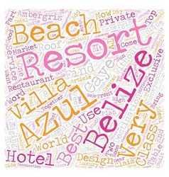 The Azul Resort On Ambergris Caye In Belize text vector image