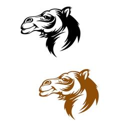Camel head vector