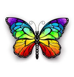 rainbow monarch butterfly vector image