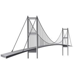 bosporus bridge vector image
