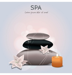 Colorful of spa with flowers candle and sto vector