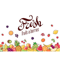 fruits background vector image