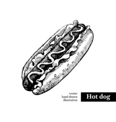 Hot dog Vintage fast food hand drawn sketch vector