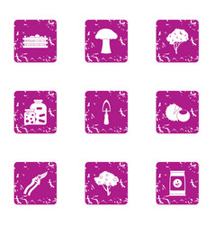 Processing area icons set grunge style vector