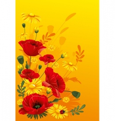 poppies and daisies vector image