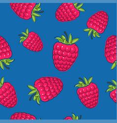 Seamless pattern raspberries on blue background vector
