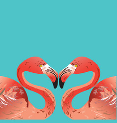 flamingo head vector image