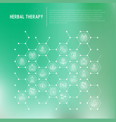 herbal therapy concept in honeycombs vector image