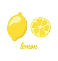 Lemon fruits poster in cartoon style depicting vector