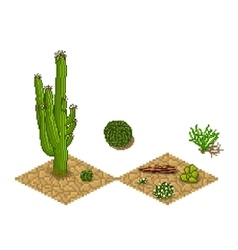 Pixel art cactus tilesets and plants game vector image