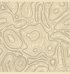 seamless topographic map texture cartography vector image