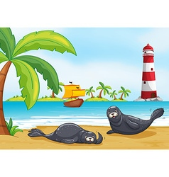 Two seals on the beach vector image