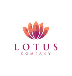 warm colorful lotus logo icon vector image