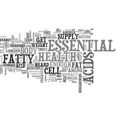 what is an essential fat text word cloud concept vector image