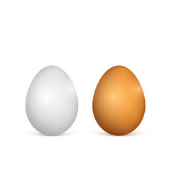white and brown eggs realistic 3d chicken eggs vector image