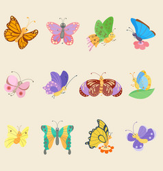 colorful butterfly insects flowing colorful vector image