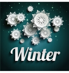 Paper snowflakes vector image