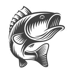 Monochrome fish bass logo vector image vector image