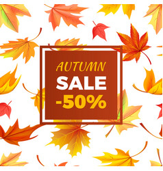 autumn sale -50 off in frame leaves foliage vector image