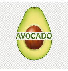 Avocado isolated and transparent background vector