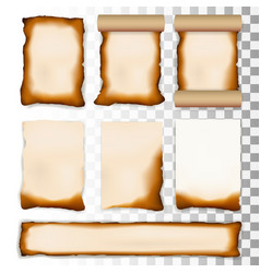 burnt a4 paper sheet set isolated on transparent vector image
